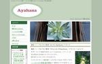 ayahana_pr.jpg